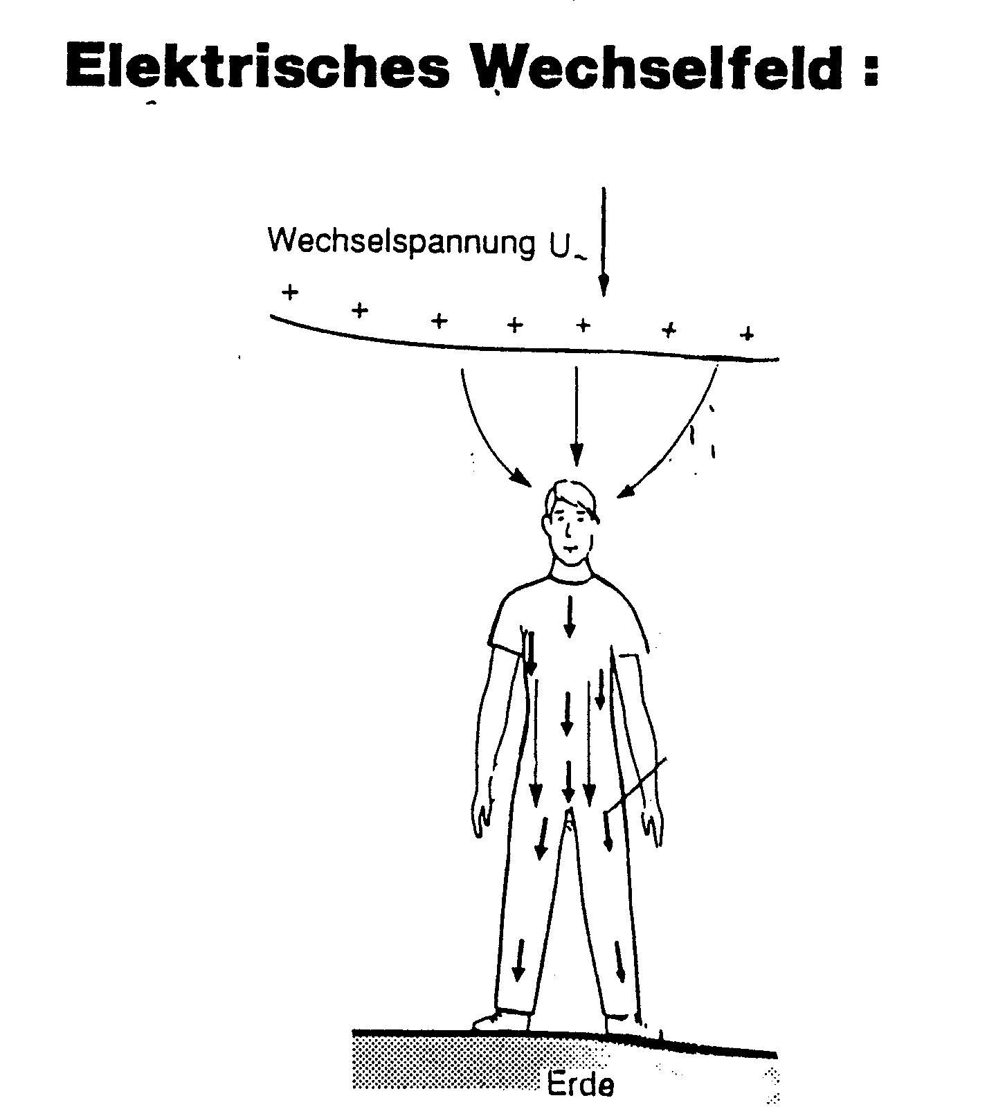 elektrische wechselfelder peter czehowsky